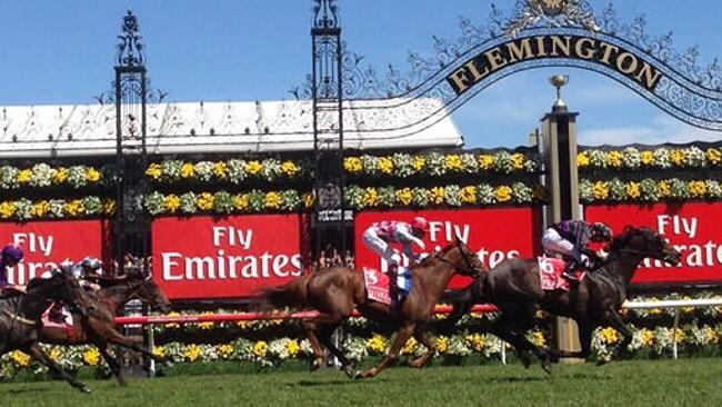 Winner ... Fiorente takes out the 2013 Melbourne Cup. Picture: Seven Network