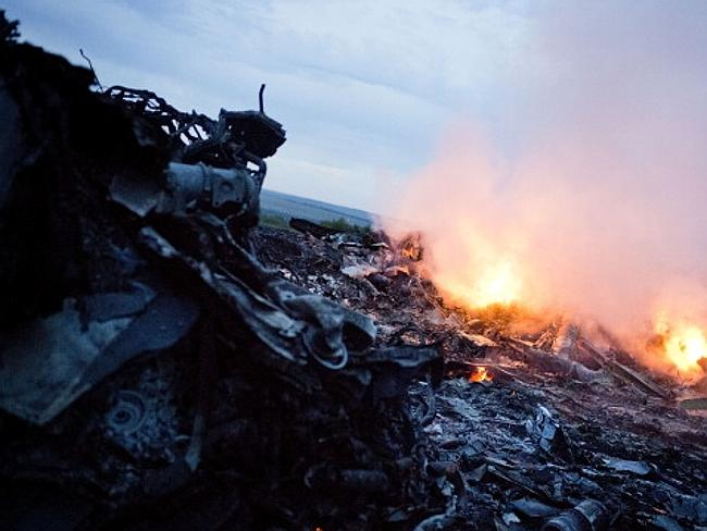 Malaysia Airlines plane shot down
