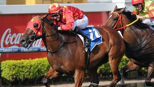 Stars align: Larry Cassidy steers Saturn Rock to victory in the Nudgee Quality at Doomben
