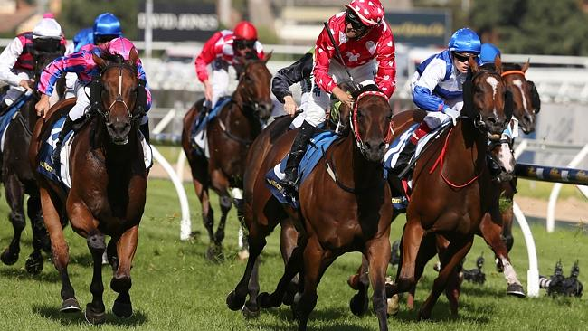 Robert Smerdon's Shamal Wind is trying to become the fifth Australian conqueror of the Ki
