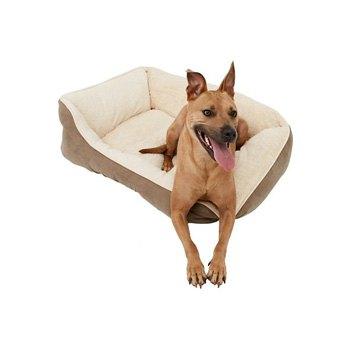 dog-beds