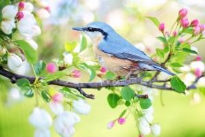 Spring into life xx