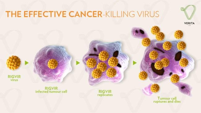 Rigvir virotherapy