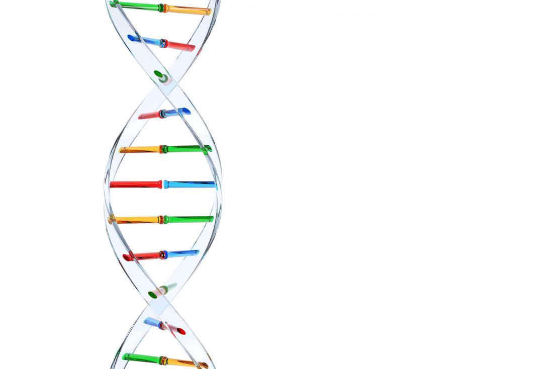 Autism is primarily genetic