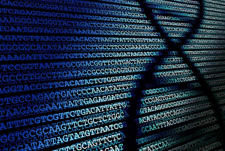 Hack DNA