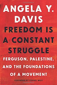 Freedom is a Constant Struggle - Angela Davis