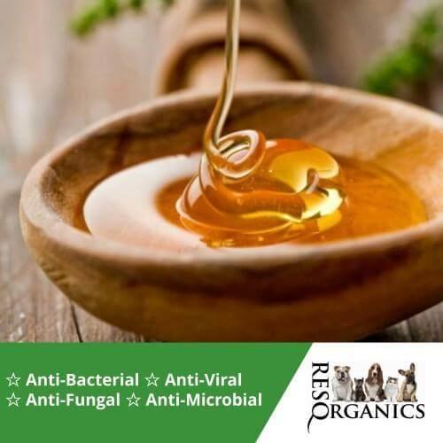UMF Manuka Honey for Dogs & Horses - ResQ Organics Pets