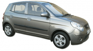 Monthly car rentals