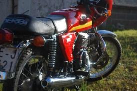 Derbi 2002 - RLM 11