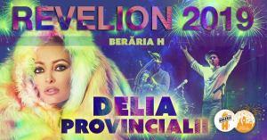 Revelion 2019 la Beraria H cu Delia, Provincialii