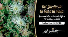 Colaboración Restaurante Alejandro con la Universidad de Almería