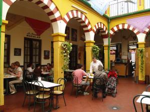 Detalle vista genral patio cordobés. Restaurantes en Córdoba. Sociedad Plateros María Auxiliadora