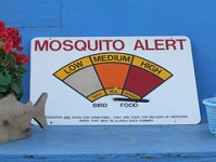 mosquito-elimination-methods-5
