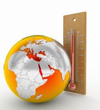New York Termites Causing Global Warming?