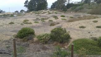 Sand Dunes! Photo Credit: Shaunice Newton