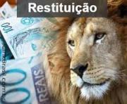 Restituição Imposto de Renda - o que é e como é feito o pagamento
