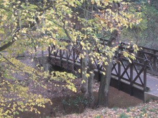 "My ""Poohsticks bridge"", Valley Gardens, Saltburn-by-the Sea"