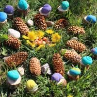 Mandala nature: nos coquilles d'escargots