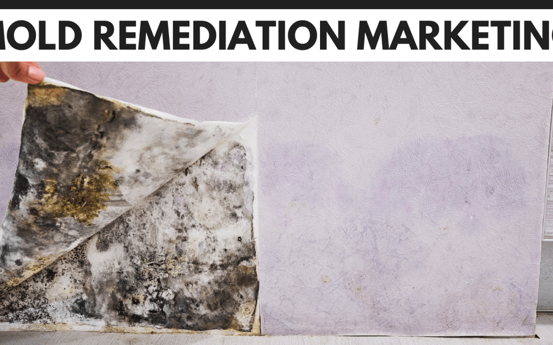 The Ultimate Guide To Mold Remediation Marketing