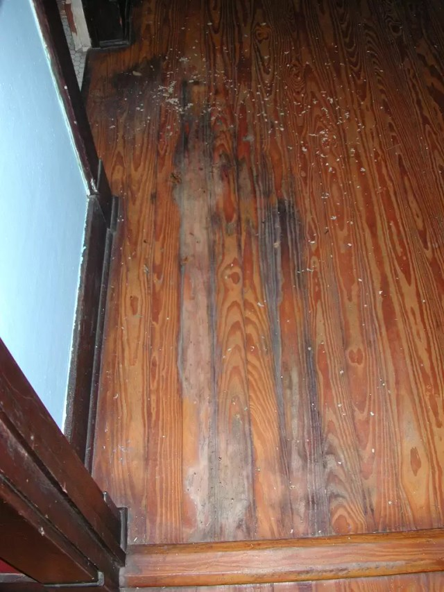 How to Restore Water Damaged Hardwood Floors  RestorationMaster