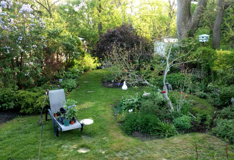 Toronto Home Landscaping Edible Garden Permaculture Local Backyard