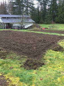 Tilled Garden Plot