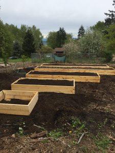Raised Cedar Garden Beds