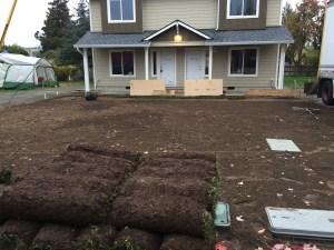 Grass Sod Installation