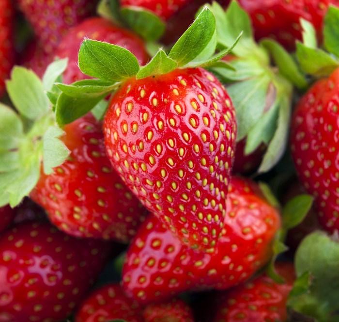 strawberry albion