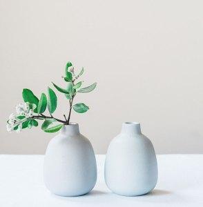 plant-nursery-39