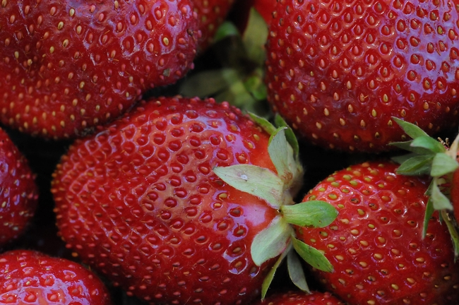 strawberry seascape