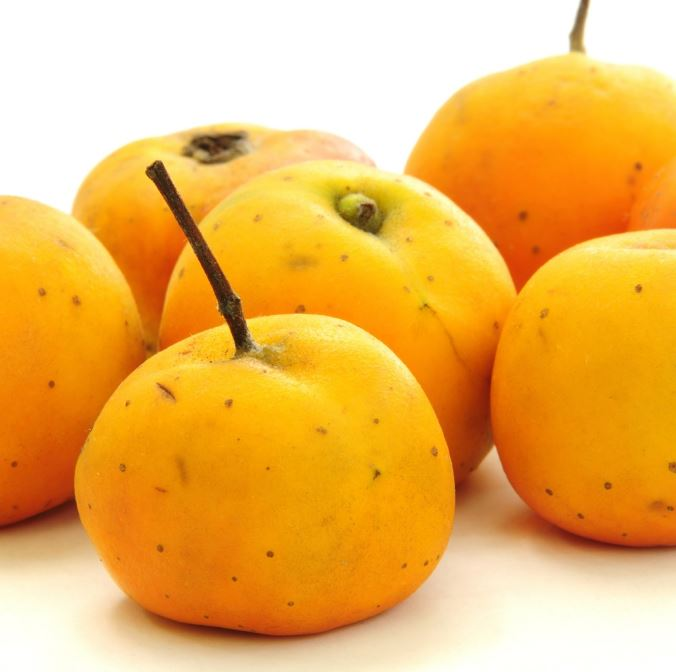 tejocote yellow fruit