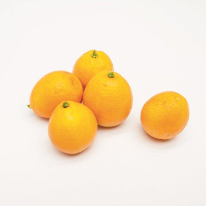 fukushu kumquat