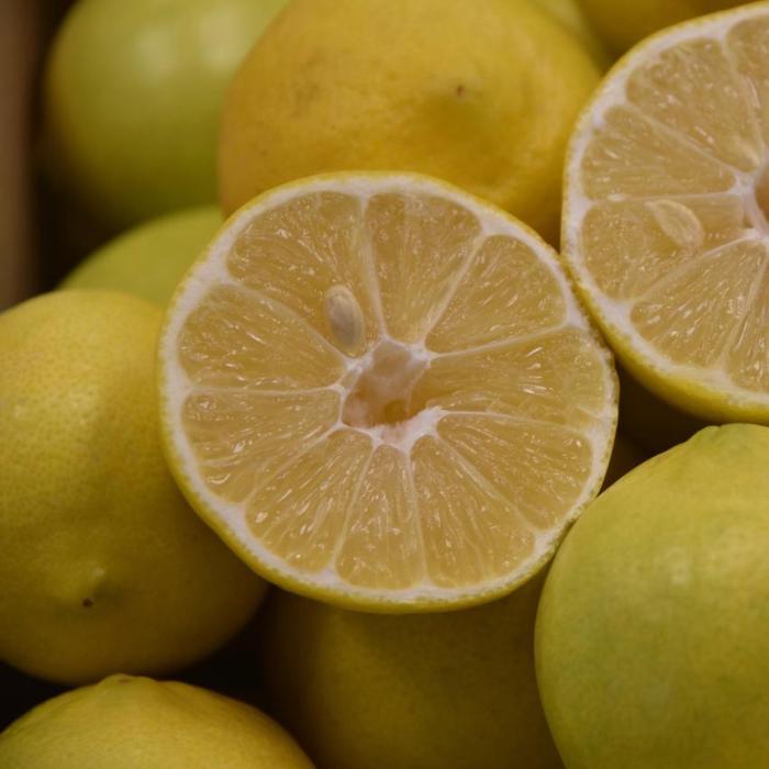 Palestine Sweet Lime