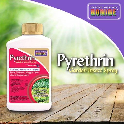 bonide pyrethrin