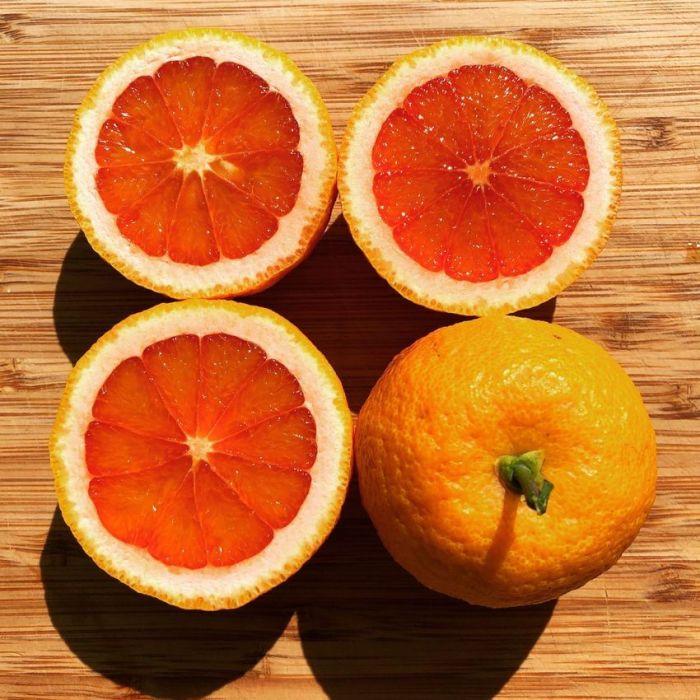 Vaniglia Sanguigno Blood orange
