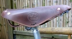 Cardiff saddle