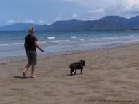 walking the dog in Port Douglas Australia