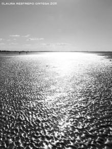 australia hervey bay beach 3
