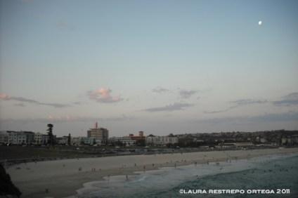australia sydney bondi sunset