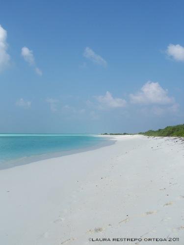 maldives baa atoll beach 1