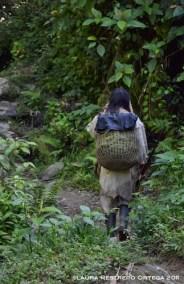 hombre kogui caminando