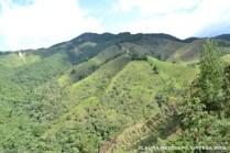 montañas4