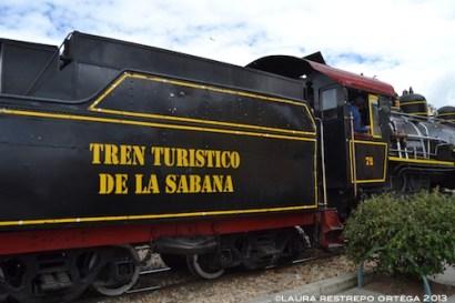 143 tren turistico de la sabana