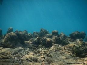 Baru&Islas 34