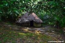 El Cocotal 11