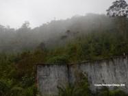 reserva orejiamarillo entrada 2