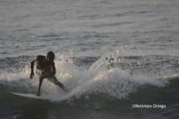 Piyi surf 14