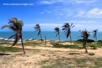 Canoa Quebrada 5