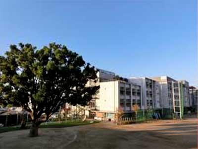 北川景子 神戸市立上筒井小学校